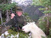 BC Mountain Goat Hunts
